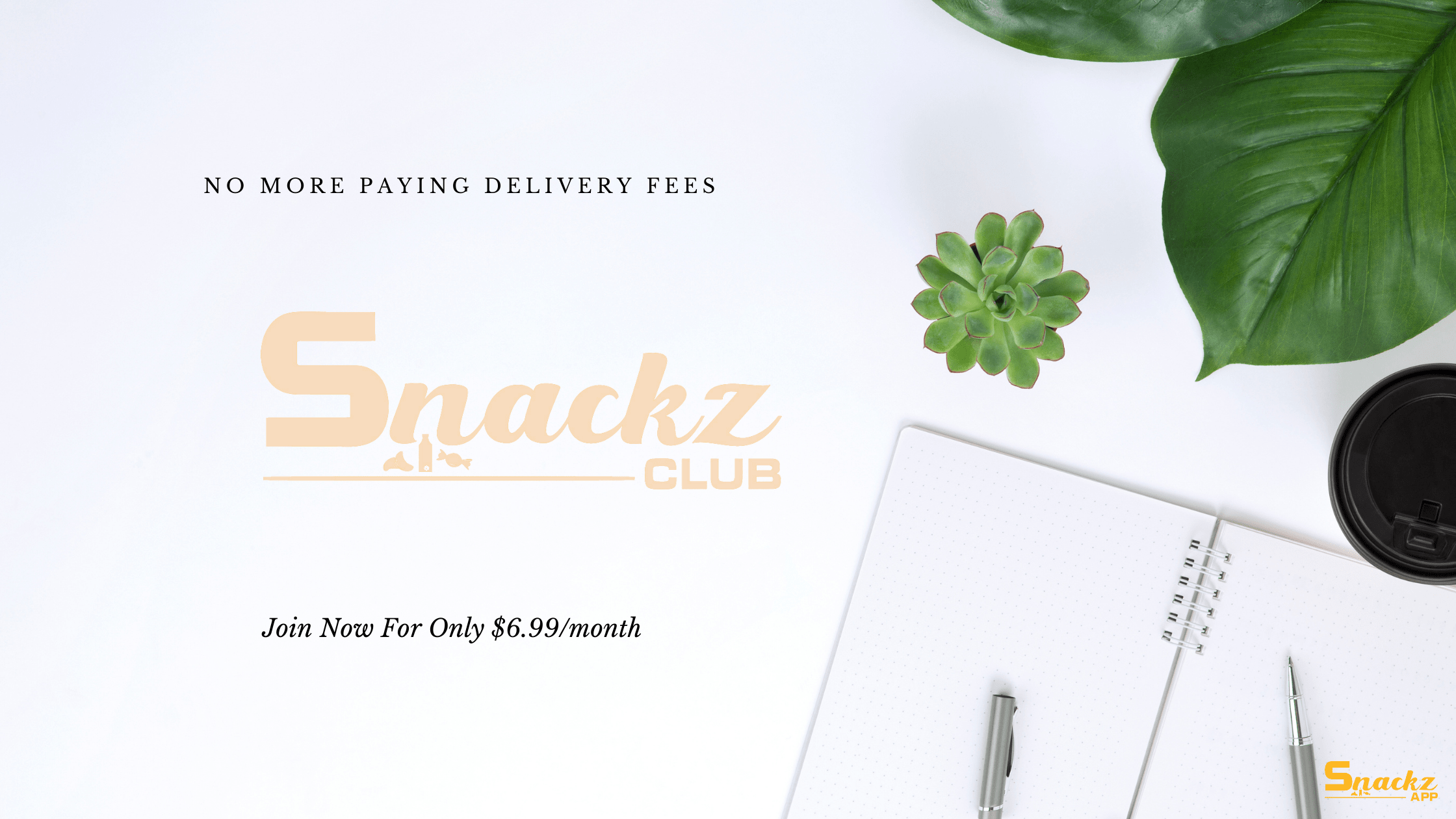 Snackz Club: A Subscription For Free Snacks Delivery